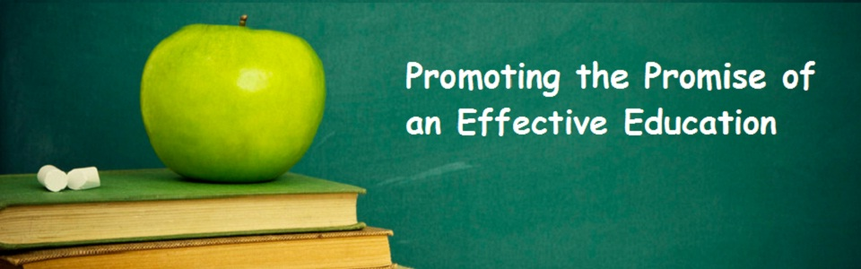 Effective Education Banner